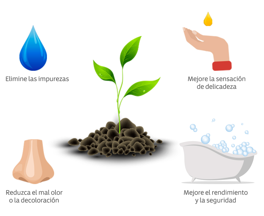 Infografia ingredientes naturales