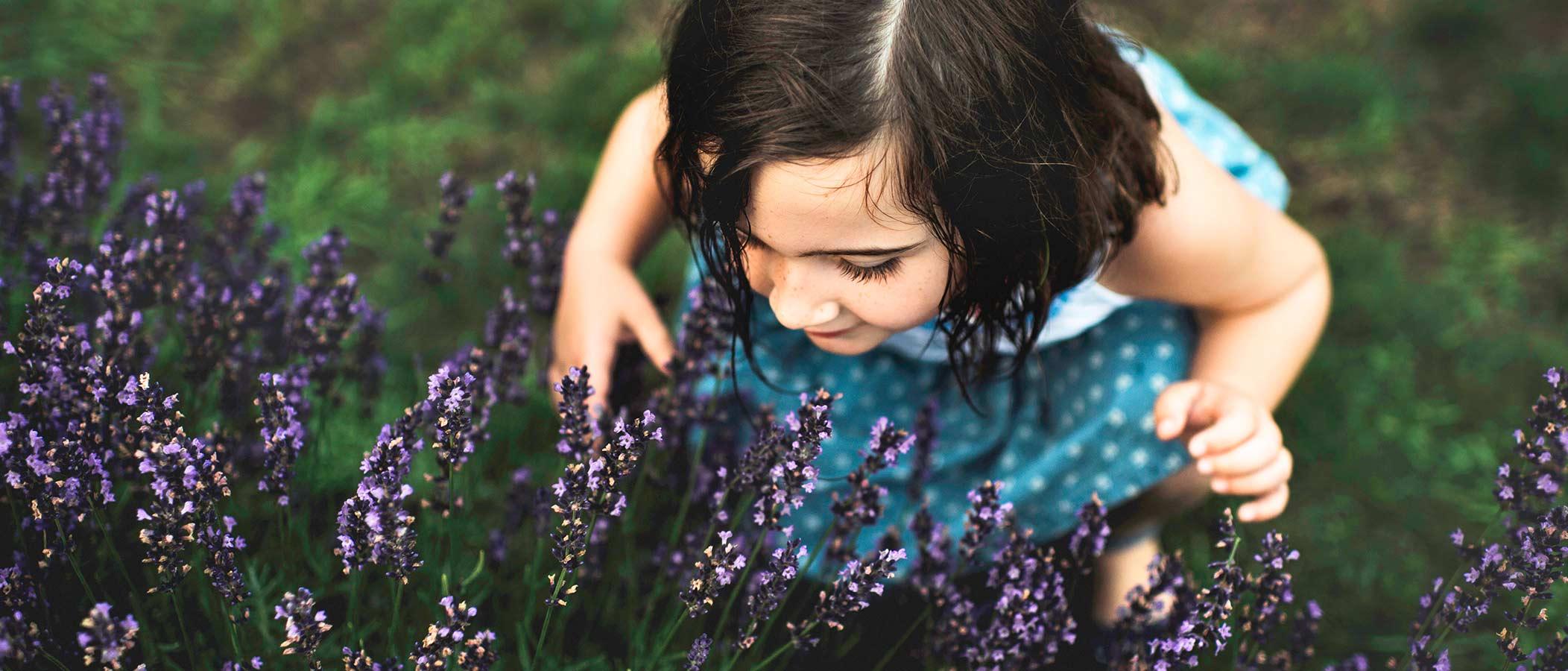 nina oliendo flores de lavanda